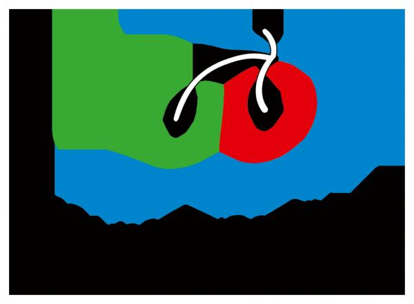 logo_drwwirte_2017_web_transparent